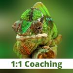 Adapting-To-Change-Coaching