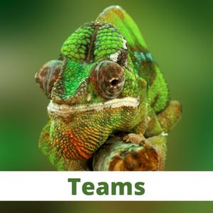 Adapting-To-Change-Teams